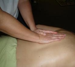 Elisa body work